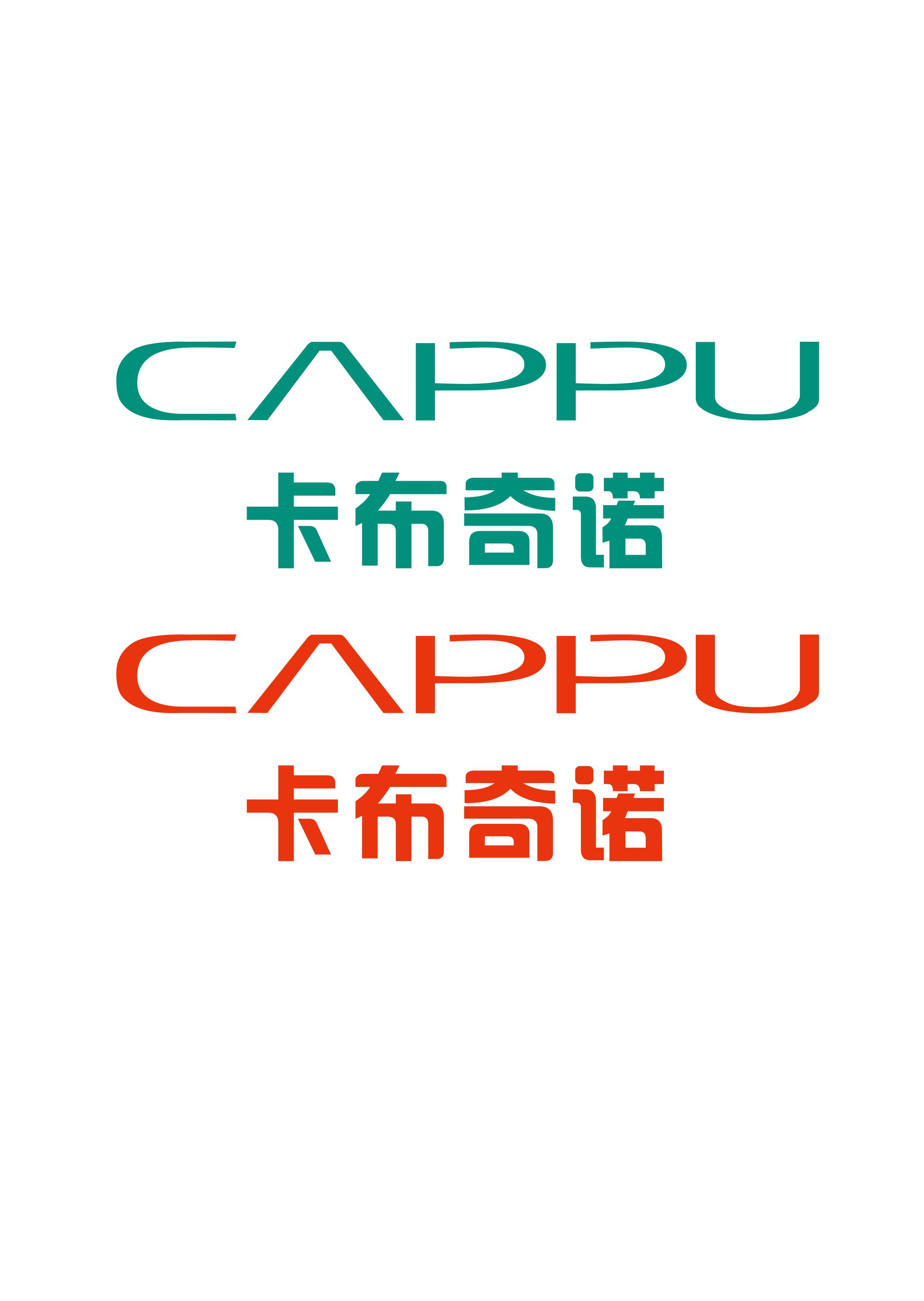 上海卡布奇诺电子科技有限公司
